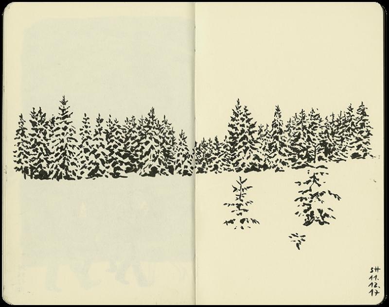 Tannenwald im Winterkleid